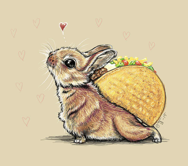 little bunny with a taco on its back